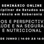 Síntese do Seminário Online – Grupo GISAN