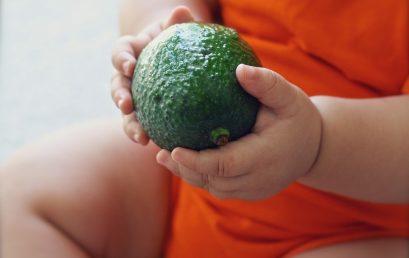 Criança verde é legal: direito, saúde, nutrição e sustentabilidade!